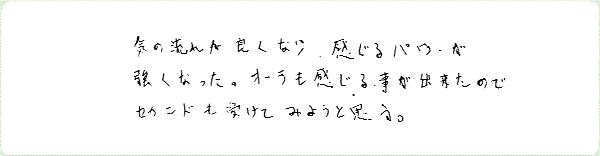 レイキ伝授のご感想0113